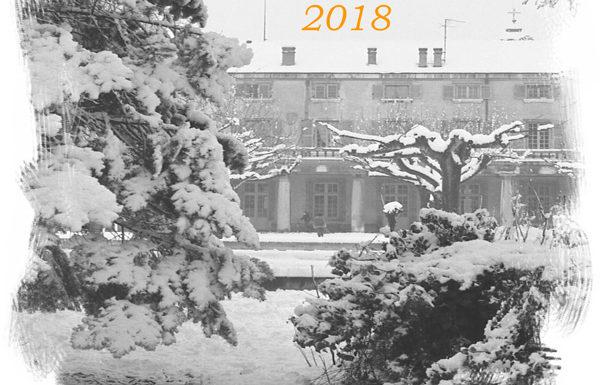 Bonne année 2018